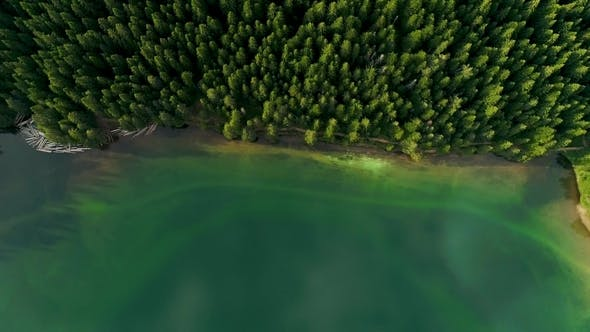 Thumbnail for Aerial View of Blue Lake and Green Forests on a Sunny Summer Day in Black Lake, Montenegro