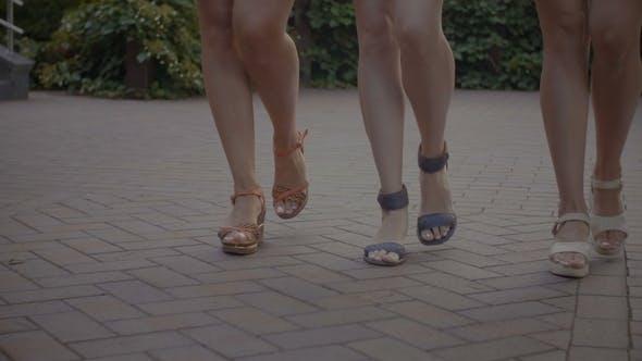 Thumbnail for Elegant Female Legs Stepping Down the Street