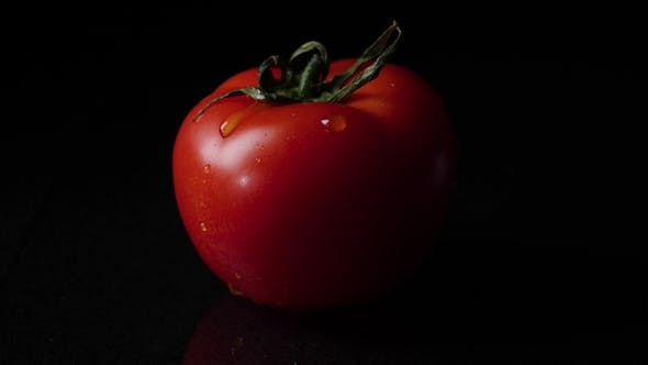 Thumbnail for Drops of Water Dripping From Above Ripe Tomatoes. Frame.  of a Drop of Water Dripping From a Tomato