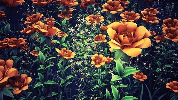 Thumbnail for Flower Field Loop