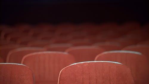 Empty Movie Theater Auditorium with Seats