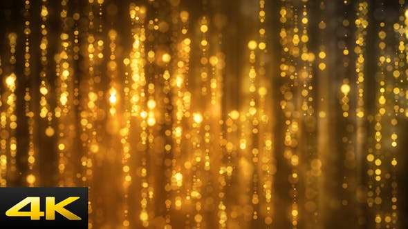 Thumbnail for Golden Reflected Focus