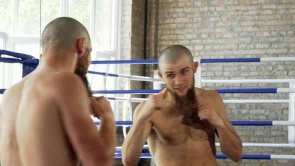 Thumbnail for Rear View Shot of a Bearded Male Boxer Practicing in Front of the Mirror