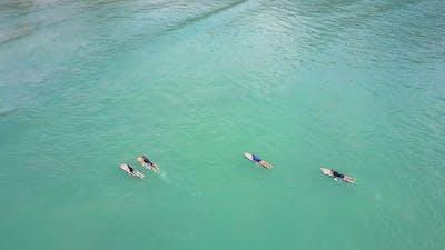 Surfer Beginners Lie on Surfboards Paddle in Ocean