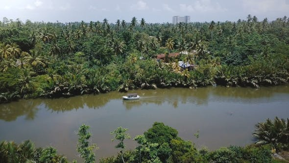 Thumbnail for Drone Panoramic View of Beautiful Rainforest River Flowing in Jungle Wilderness with Small Boat and