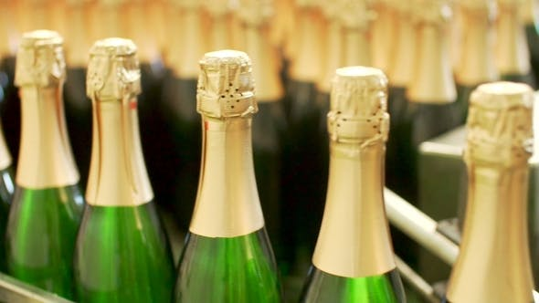 Thumbnail for Champagne Bottles on Factory Conveyor Belt