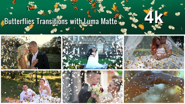 Thumbnail for Butterflies Transition with Luma Matte – 7 Variations