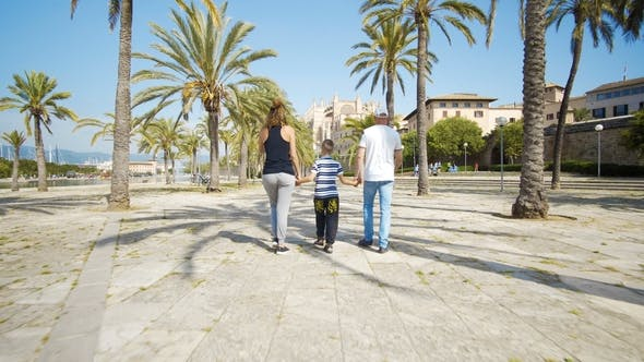 Cover Image for Mother, Father and Son Walking between Palm Trees