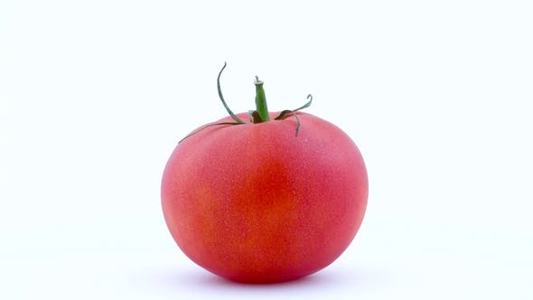 Thumbnail for One Whole Big Red Tomato Is Rotating on the Turntable Isolated on the White Background