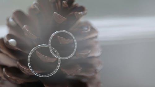 Wedding Silver Rings on the Cone   Shoot Diamon Jewellery