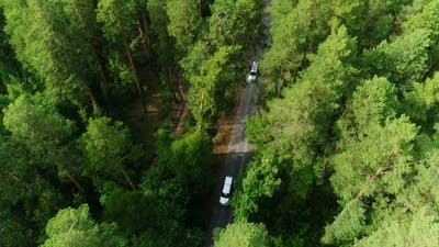 Camera Rises Above Forest Follows Traffic Along Road Flashing Trees