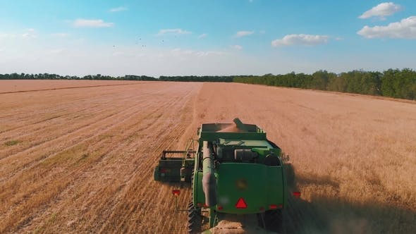 Cover Image for Aerial View of a Combine Harvester Working in a Field