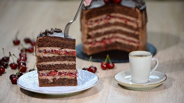 Thumbnail for Piece of Cherry Chocolate Cake