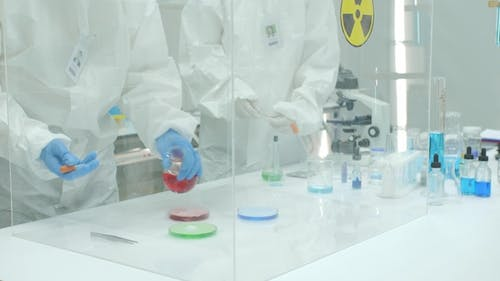 Team of Scientist Working in a Secure High Level Research Laboratory