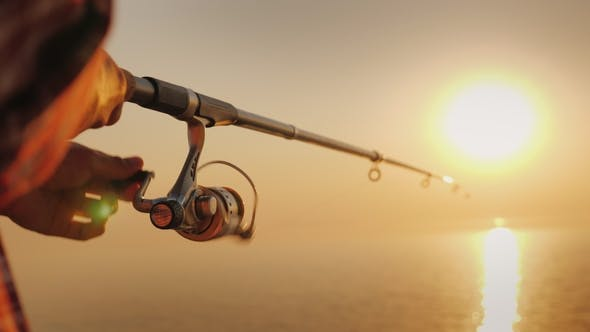 Cover Image for The Fisherman's Hands, Holds the Spinning Rod, Rotates the Coil Handle. Hobby and Activity