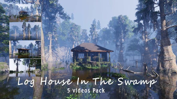 Log House In The Swamp Pack