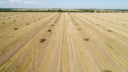 Aerial View of the Field with Heaps of Fertilizers