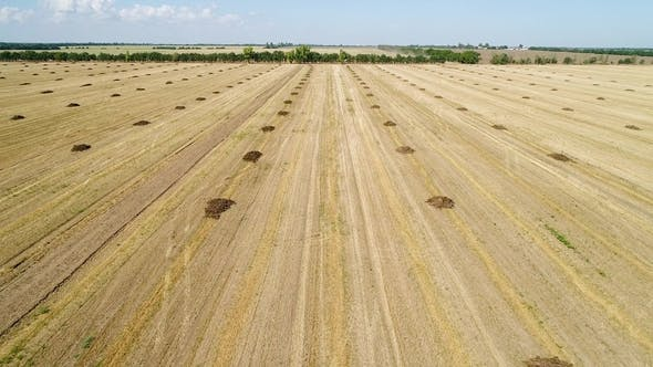 Thumbnail for Aerial View of the Field with Heaps of Fertilizers