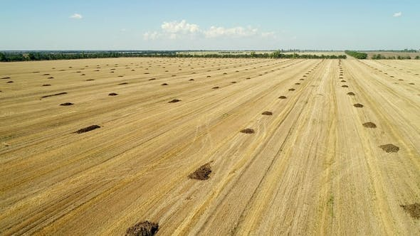 Cover Image for Aerial View of the Field with Heaps of Fertilizers