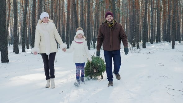 Thumbnail for A Married Couple with a Child Walks Through a Snow-covered Forest, a Girl Is Dragging a Sled with a