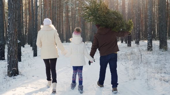 Cover Image for A Happy Family with a Child Is Walking Along a Snow-covered Forest, the Father Is Carrying