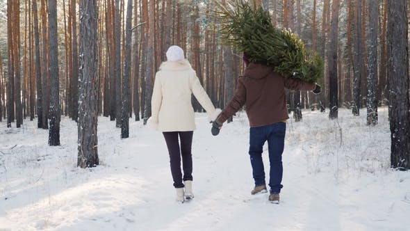 Thumbnail for A Young Couple Is Walking Along a Snow-covered Forest, a Man Is Carrying a Christmas Tree