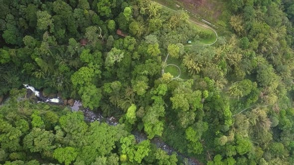 Thumbnail for High Aerial View Highland with Gorge in Jungle