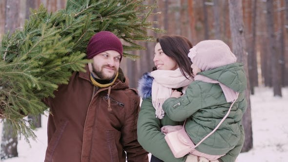 Thumbnail for Two Parents with a Child Driving a New Year Tree on a Sled on a Snowy Forest.