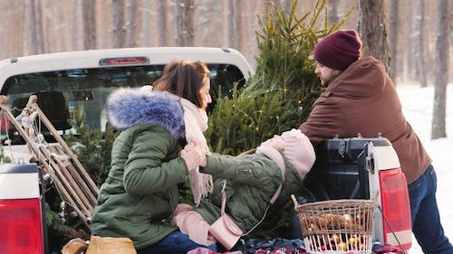 A Stylish Dad with a Beard Loads a New Year Tree in the Car's Body, on Which a Young Wife and Child