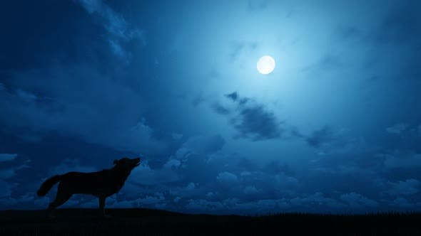 Thumbnail for Wolf Howling Moon