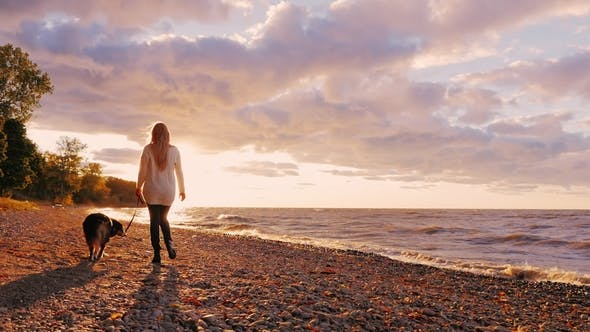 Thumbnail for Young Woman Walking with a Dog on the Shore of Lake Ontario at Sunset