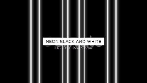 Neon Black And White