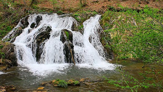 Thumbnail for Waterfall In The Forest In Spring