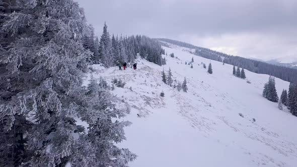 Thumbnail for Flying Over a Group of Tourists in the Winter Mountains