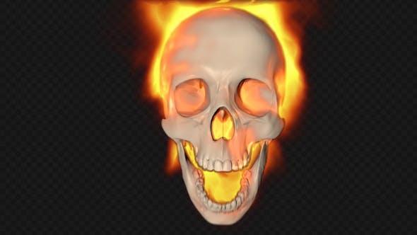 Cover Image for Skull Burning Transition