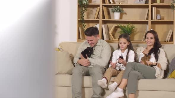 Thumbnail for Família feliz assistindo TV e acariciando gatos no sofá em casa