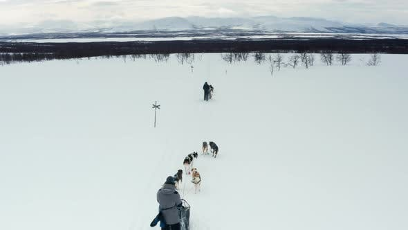 Thumbnail for Amazing Aerial View of Dogsleds in a Winter Landscape