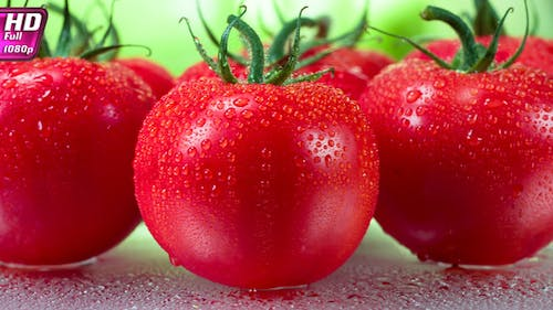 Fresh Tomatoes Delivered