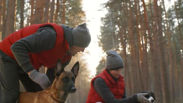 Thumbnail for Dog Owners Stroking Pets during Walk