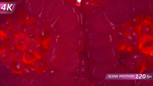 Two Synchronously Compressed Raspberry