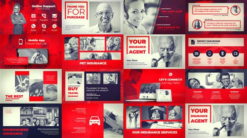 Insurance Company - Agent Portfolio