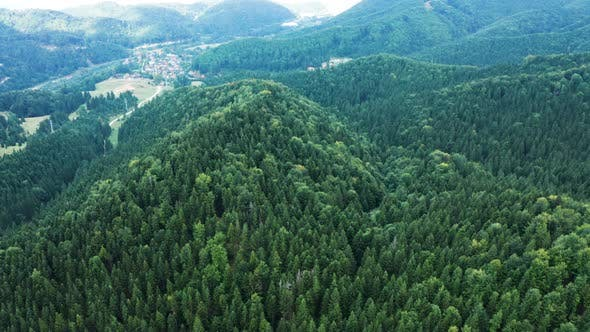 Cover Image for Drone Flying Above Beautiful Green Forest in the Mountains