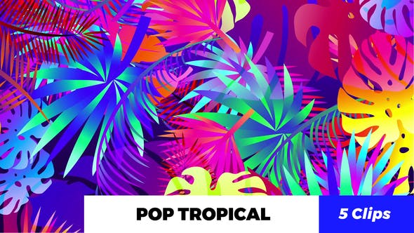 Thumbnail for Pop Tropical Loops