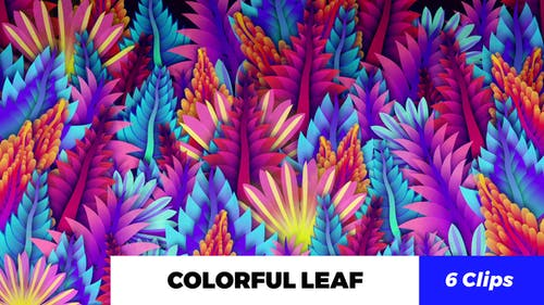 Colorful Leaf Kaleido