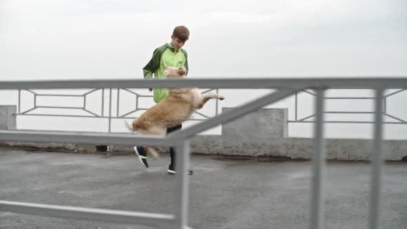Thumbnail for Teenage Boy Playing with Labrador Dog While Walking