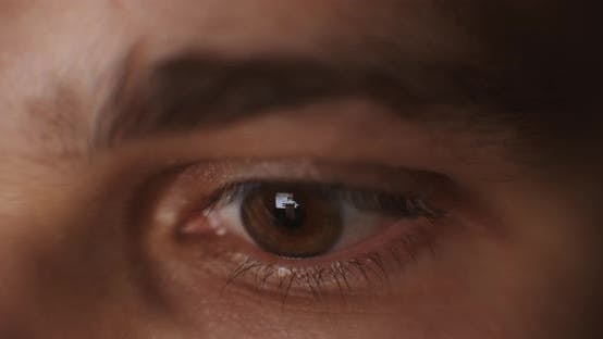 Thumbnail for Amazing Male Green and Grey Coloured Eye