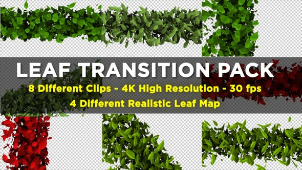 Thumbnail for Leaf Transition Pack 4K