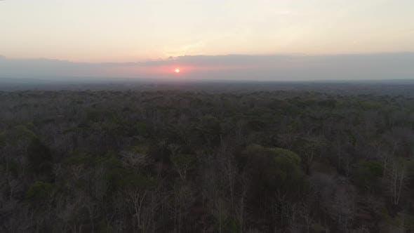 Sunset Over Savanna