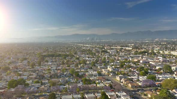 Thumbnail for Aerial Overlook on Los Angeles Residental Area. Morning Panoramic View
