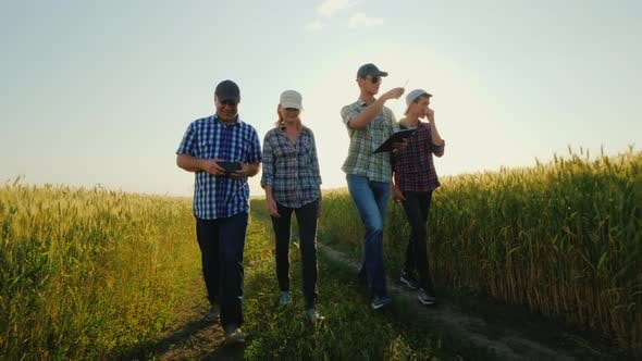 Thumbnail for A Group of Young Farmers Walks Along a Country Road Along Wheat Fields